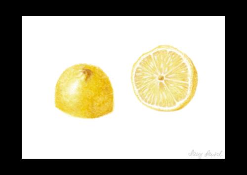 Lemon 2015
